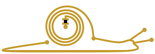 snail_logo